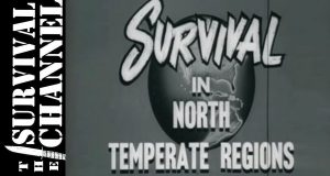 Survival-Living-Off-The-Land-1955-US-Navy-Training-Film-The-Survival-Channel-Outdoor-Gear-Reviews