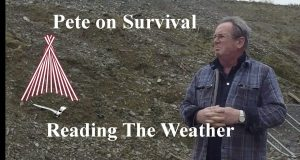 Survival-Tactics.-Reading-weather