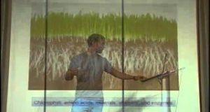 Wild-Edibles-Sergei-Boutenko-2011-Survival-Preparedness-Conference