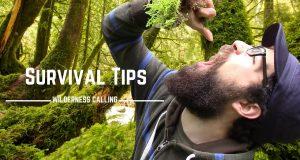 Trovare-acqua-nei-boschi-Muschio-Survival-Tips